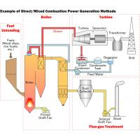 direct combustion of biomass for heat generation By technology, the biomass power generation is categorized into landfill gas, co-firing, combustion, chp, anaerobic digestion, and gasification the combustion segment dominates the industry regarding installed capacity and power generation.