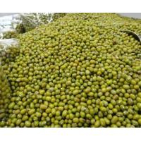 mycological quality of sweetened mung beans Street food indonesia : kacang ijo madura for the purpose of making sweet soups mung beans in some regional quality protein that is.